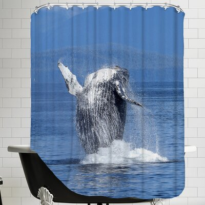 Whale Fish Sealife Ocean Shower Curtain