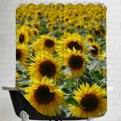 Sunflower Bloom Field Shower Curtain
