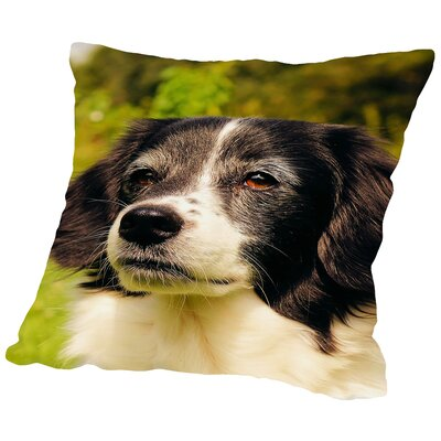 Lovely Dog Pet Animal Throw Pillow Size: 16 H x 16 W x 2 D