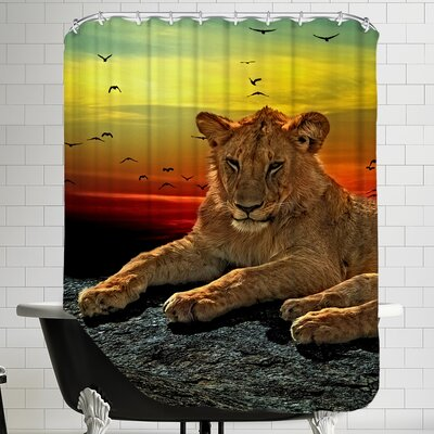 Wildlife Lion Cat Savanna Africa Shower Curtain