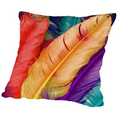 Colorful Bird Feather Throw Pillow Size: 16 H x 16 W x 2 D
