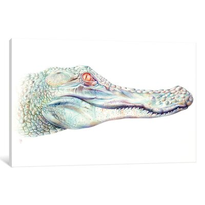 'Albino Alligator' by Brandon Keehner Graphic Art on Wrapped Canvas ESRB1961 34346265