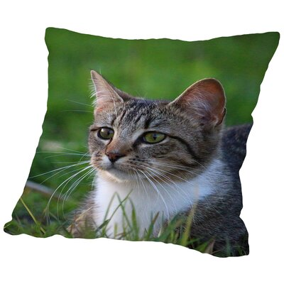 Cat In The Nature Animal Throw Pillow Size: 14 H x 14 W x 2 D