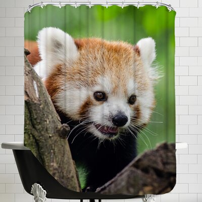 Panda Bear Animal Shower Curtain