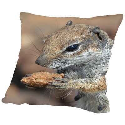 Squirrel Mammal Animal Throw Pillow Size: 16 H x 16 W x 2 D