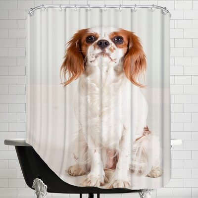Portrait Dog Animal Shower Curtain