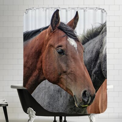 Horse Animal Farm Wildlife Shower Curtain