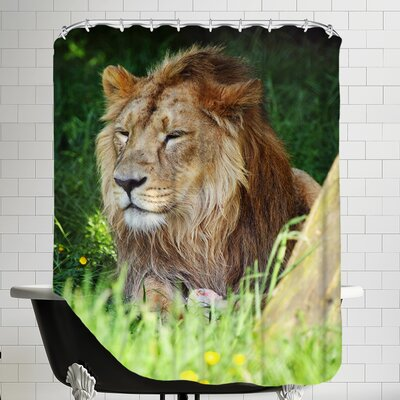 Lion Cat Shower Curtain