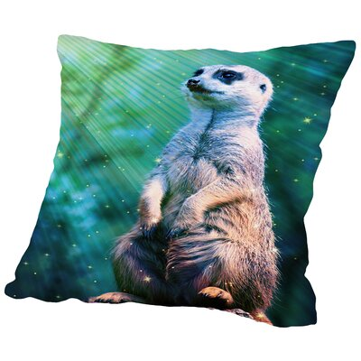 Meerkat with Stars Throw Pillow Size: 14 H x 14 W x 2 D