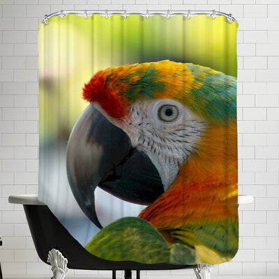 Colorful Bird Parrot Animal Shower Curtain