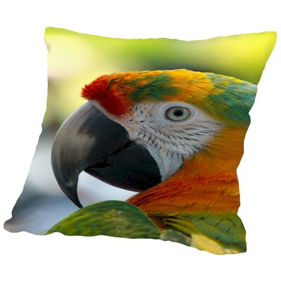 Colorful Bird Parrot Animal Throw Pillow Size: 16 H x 16 W x 2 D
