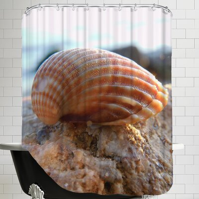 Sea Shell Style Shower Curtain