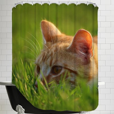 Cute Cat in the Nature Shower Curtain