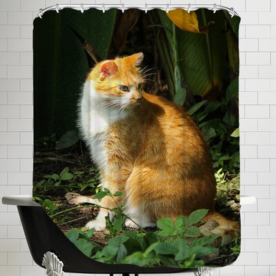 Cat Pet Animal Nature Shower Curtain