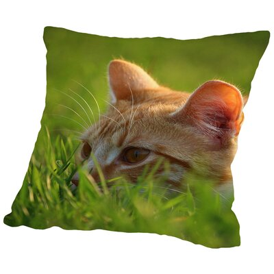 Cute Cat in the Nature Throw Pillow Size: 14 H x 14 W x 2 D