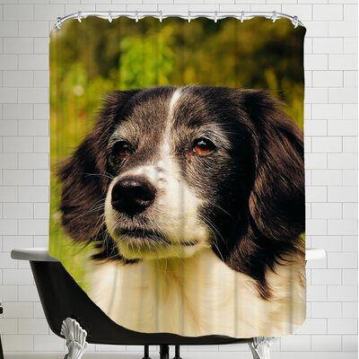Lovely Dog Pet Animal Shower Curtain
