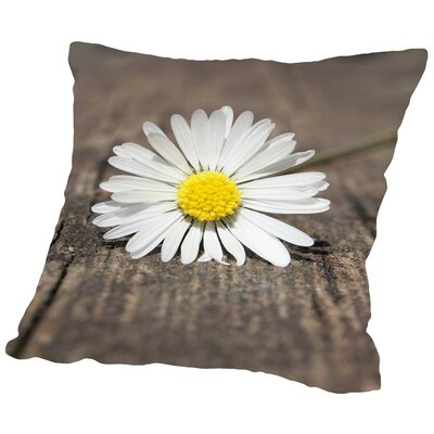 Daisy Flower On The Floor Throw Pillow Size: 14 H x 14 W x 2 D