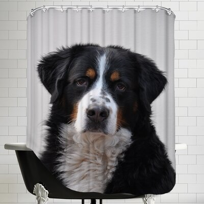 Cute Dog Pet Animal Shower Curtain