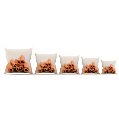 Cinnamon Throw Pillow Size: 20 H x 20 W x 4 D, Color: Brown