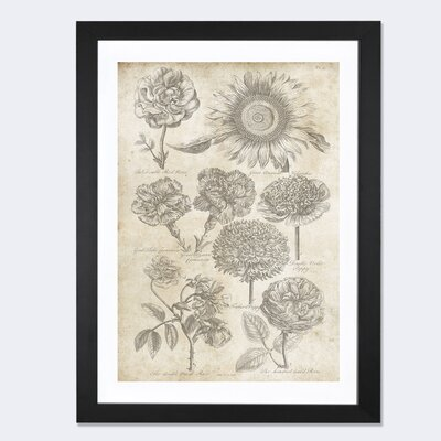 Eden Antique Bookplate Canvas Giclee Print