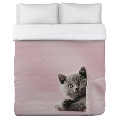 Blanket Cat - Lightweight Duvet Cover Size: Full/Queen