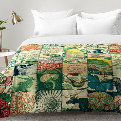 Wonderful World Patchwork Comforter Set Size: Full/Queen