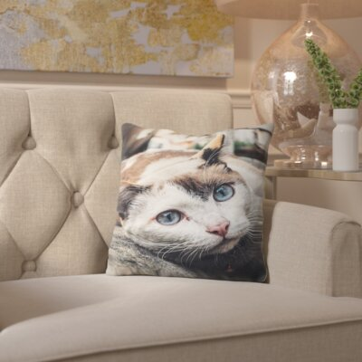 Cotton Throw Pillow Size: 16 H x 16 W x 2 D
