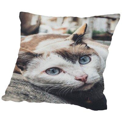 Cotton Throw Pillow Size: 14 H x 14 W x 2 D
