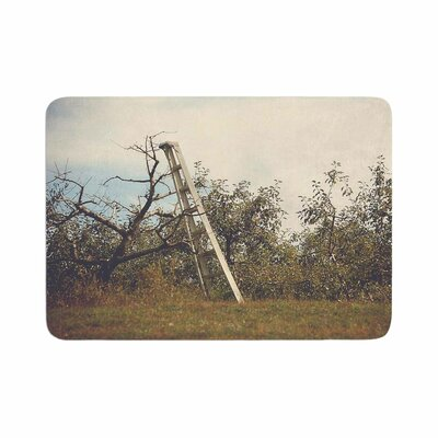 Angie Turner Apple Picking Photography Memory Foam Bath Rug Size: 0.5 H x 24 W x 36 D