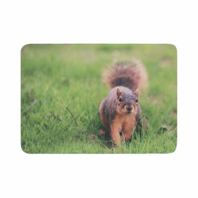Angie Turner Squirrel Animals Memory Foam Bath Rug Size: 0.5 H x 24 W x 36 D