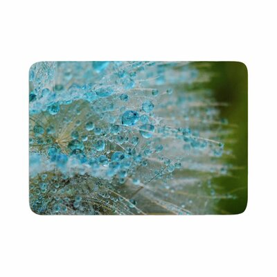 Ginkelmier Rain Dandelion Photography Memory Foam Bath Rug Size: 0.5 H x 17 W x 24 D