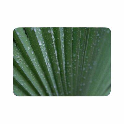 Cyndi Steen Palm Frond Memory Foam Size: 0.5 H x 17 W x 24 D