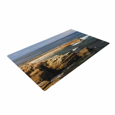 Nick Nareshni Ocean Jetty Blue/Brown Area Rug Rug Size: 4 x 6