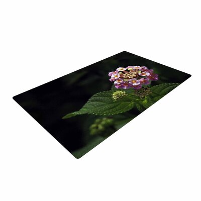 Nick Nareshni the Lantana Flower Pink/Green Area Rug Rug Size: 4 x 6