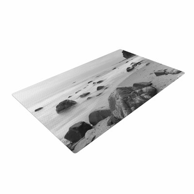 Nick Nareshni Water Moving Around Rocks Gray/Black/White Area Rug