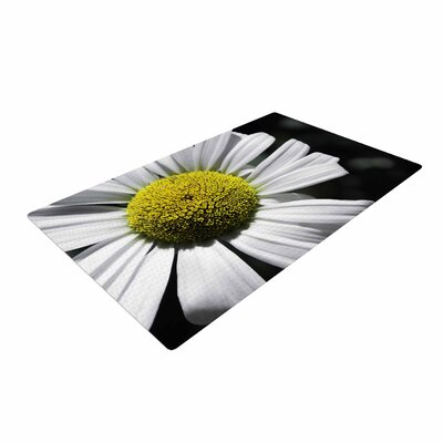 Nick Nareshni Open Daisy White/Blue Area Rug