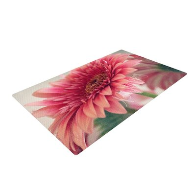 Robin Dickinson Be Happy Floral Pink Area Rug Rug Size: 2 x 3