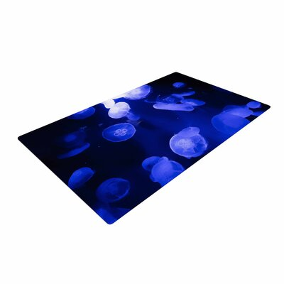 Juan Paolo Jellyfish Blue/Black Area Rug