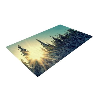 Robin Dickinson Shine Bright Snowy Trees Green/Blue Area Rug Rug Size: 2 x 3