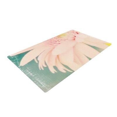 Robin Dickinson Wonderful Pink/Green Area Rug Rug Size: 2 x 3