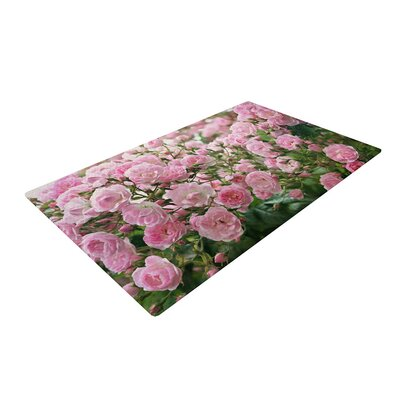 Sylvia Cook the Fairy Rose Floral Pink Area Rug Rug Size: 2 x 3