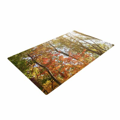 Sylvia Coomes Autumn Trees 1 Green/Orange Area Rug