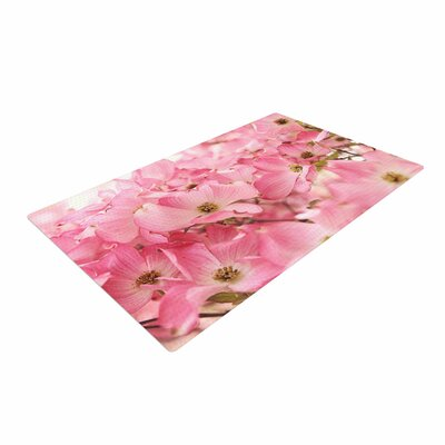 Sylvia Cook Dogwood Floral Photography Pink Area Rug Rug Size: 2 x 3