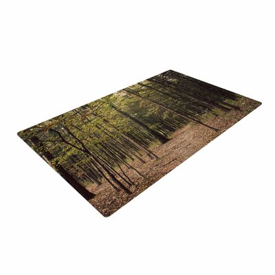 Sylvia Coomes Forest Trees Green/Brown Area Rug