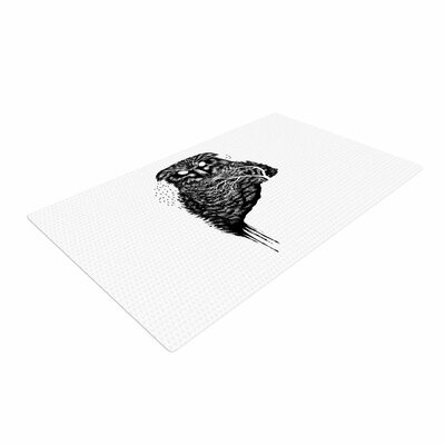 BarmalisiRTB Autumn Owl Black/White Area Rug