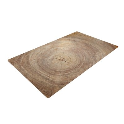 Susan Sanders Aging Tree Wooden Brown Area Rug Rug Size: 2 x 3