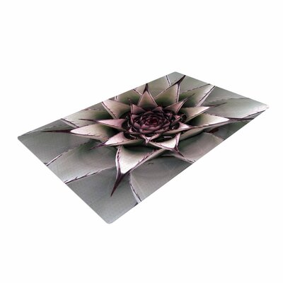 Suzanne Carter Succulent Green/Black Area Rug Rug Size: 4 x 6