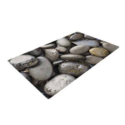 Susan Sanders Skipping Stone Rocks Gray Area Rug Rug Size: 2 x 3