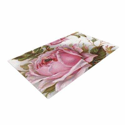 Suzanne Carter Vintage Rose Floral Pink/Green Area Rug Rug Size: 2 x 3