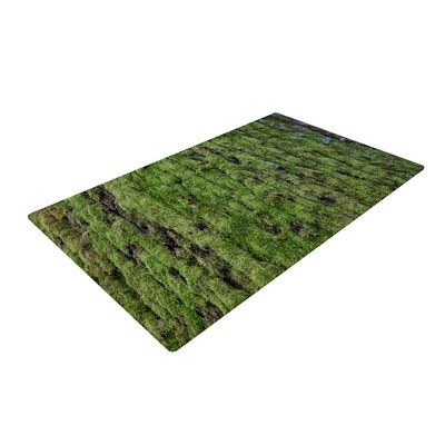 Susan Sanders Moss Green/Nature Area Rug